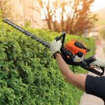 Professional gardner dressed with safety overalls using an hedge